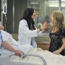 Grey's Anatomy (2005) - 454 x 302