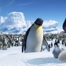 "Maurice (voiced by DEE BAKER), Baby Gloria and Memphis (voiced by HUGH JACKMAN) examine Mumble's egg with concern in Warner Bros. Pictures' and Village Roadshow Pictures' comedy adventure ""Happy Feet,"" distributed by Warner Bro - 454 x 193"