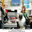 (Left to right) Kristin Davis, The Shaggy Dog, Zena Grey and Spencer Breslin. Photo Credit: Joseph Lederer © 2006 Disney Enterprises, Inc. All rights reserved.' - 454 x 336