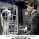 The Shaggy Dog, Robert Downey Jr. and Bess Wohl. Photo Credit: Joseph Lederer © 2006 Disney Enterprises, Inc. All rights reserved.'