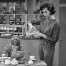 The Dick Van Dyke Show - 454 x 585