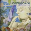 Cathedral Album - The Guessing Game