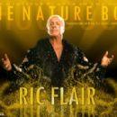 Ric Flair - 454 x 283
