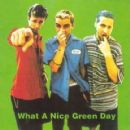 What A Nice Green Day