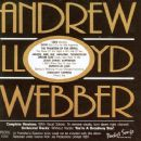 You Sing the Hits of Andrew Lloyd Webber - Andrew Lloyd Webber - Andrew Lloyd Webber