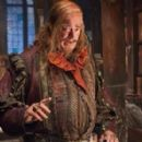 The Hobbit: The Desolation of Smaug - Stephen Fry - 454 x 278