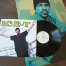 That's How I'm Livin' - Ice-T - Ice-T