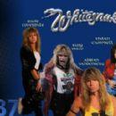 1987 Whitesnake Tour - 454 x 282