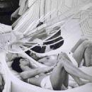 Sigourney Weaver - 454 x 701