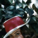 Judi Meredith - 454 x 730