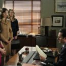 The Good Wife (2009) - 454 x 304