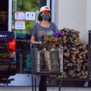 Catherine Bell – Stops by a health food store in Calabasas - 454 x 562