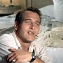 Sweet Bird of Youth - Paul Newman - 454 x 345