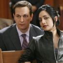 """""""The Good Wife"""" (2009)"""