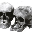 Olga and Tatiana Skulls