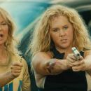Snatched (2017) - 454 x 189