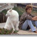 Rachel Ward as Jessie Wyler in Against All Odds (1984) - 454 x 266