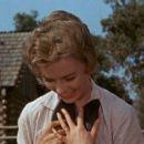 Old Yeller - Dorothy McGuire - 454 x 255
