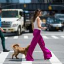 Danielle Campbell with her dog out in New York City - 454 x 303