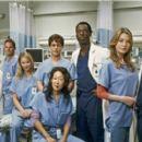 Grey's Anatomy Season photos - 454 x 269
