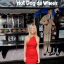 Tara Reid: at the 'American Pie: Reunion' photocall
