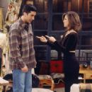 The One Where Ross and Rachel... You Know - 454 x 686
