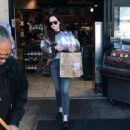 Dakota Johnson – Shopping in Los Angeles - 454 x 528