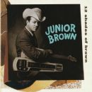 Junior Brown - 12 Shades of Brown