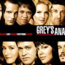 Grey's Anatomy Season 4 Cast - 454 x 300