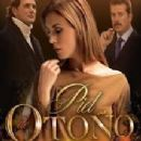 2005 Mexican television series debuts