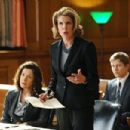 The Good Wife (2009) - 454 x 302
