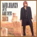 David Johansen - Shaker